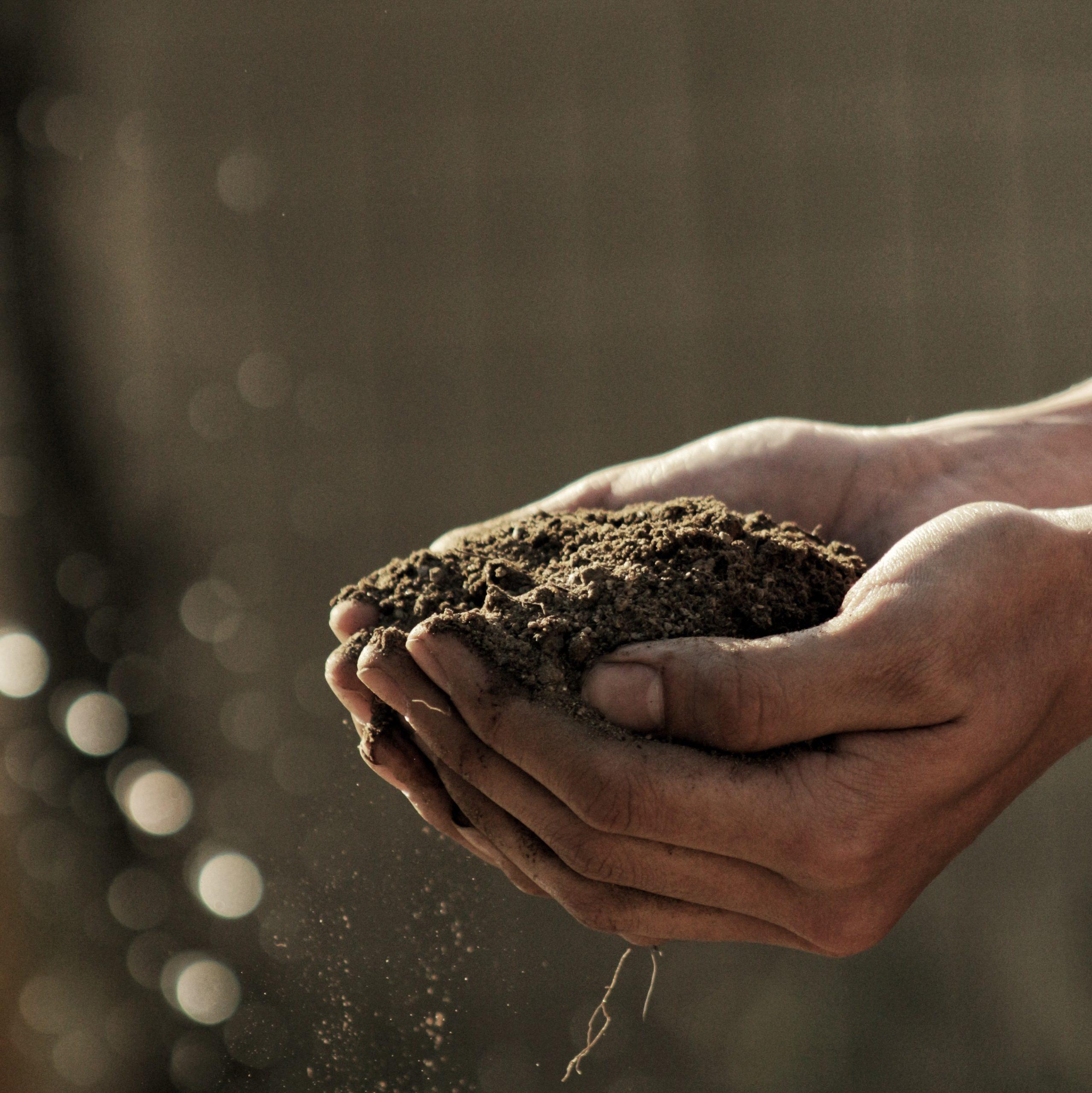 earth soil ground